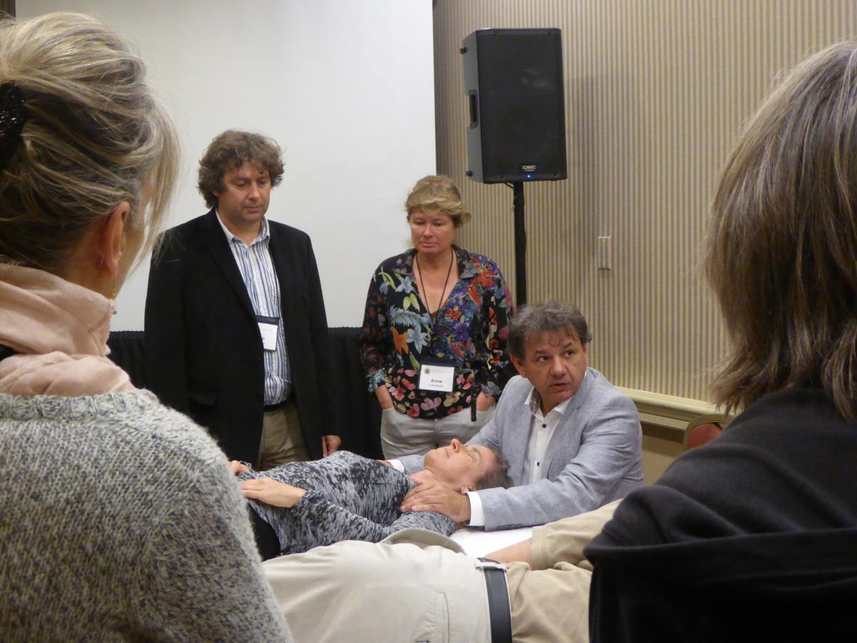 fasciatherapie MDB workshop post-congres FRC2015.jpg